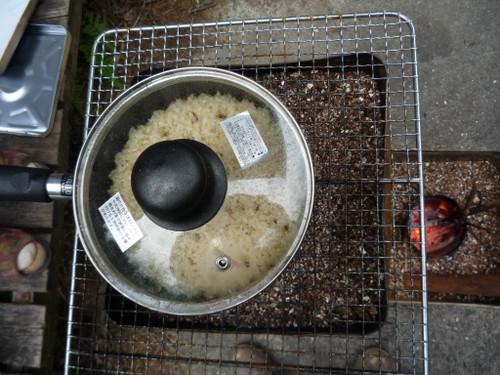 ロケットストーブで玄米を炊く