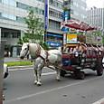 観光用幌馬車