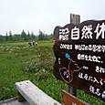 ニセコ自然休養林