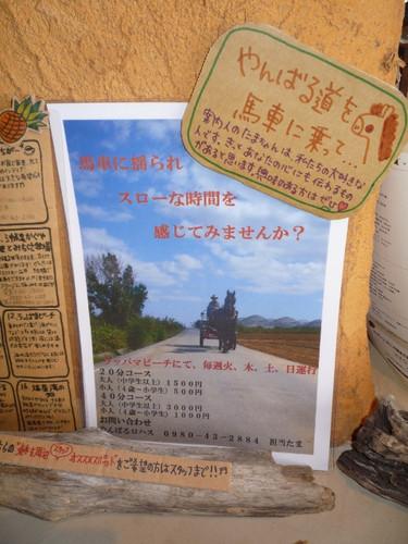 東村では馬車に乗れます