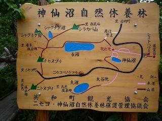 神仙沼自然休養林