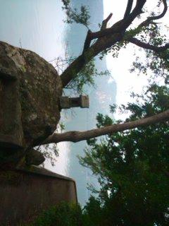 奥会津沼沢湖